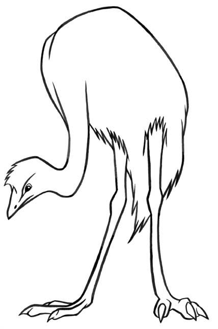 oiseau coloriages à imprimer colorier  coloriages1001fr